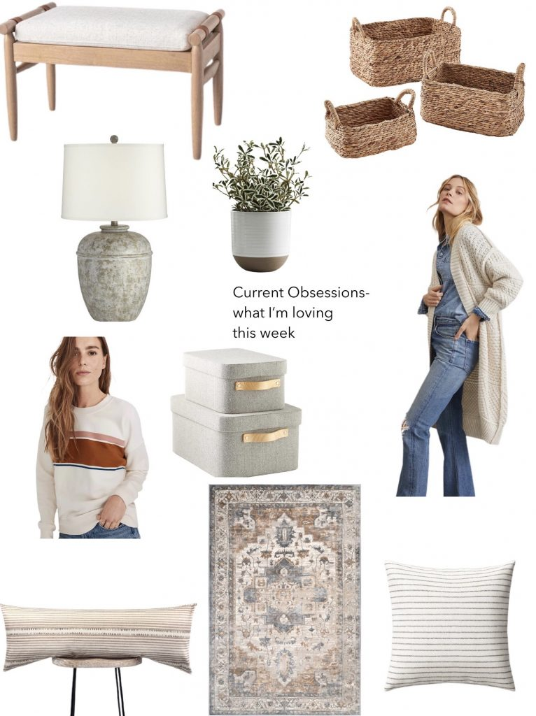 current obsessions what I'm loving this week.  cute sweatshirt, oversized lumbar pillow, vintage-inspired rug, functional storage